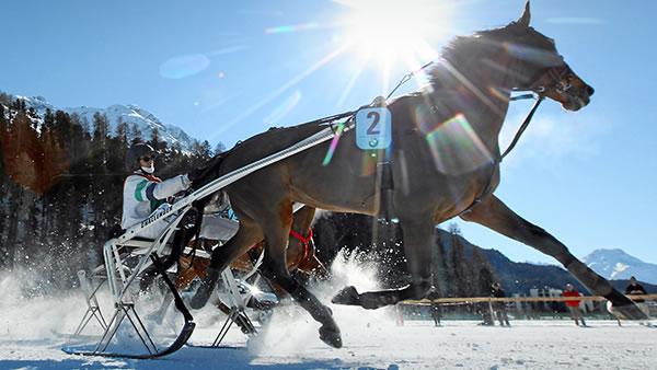 bmw sports white turf slide 03.jpg.resource.1379424706457 - White Turf 2015 – BMW als Sponsor des renommiertesten Pferderennens auf Eis und Schnee
